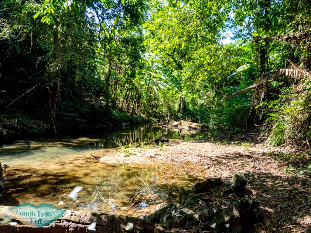 walking in stream ma da lake to elephant cave phong nha vietnam - laugh travel eat