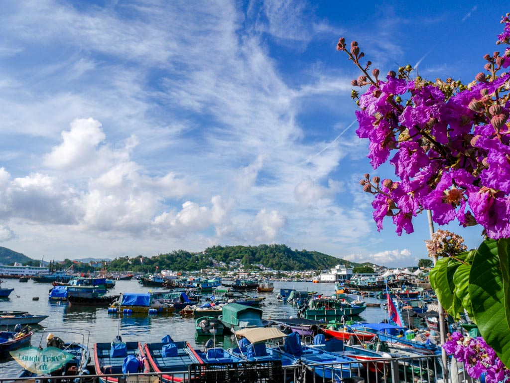 flowers and port Cheung Chau, Hong Kong - Laugh Travel Eat
