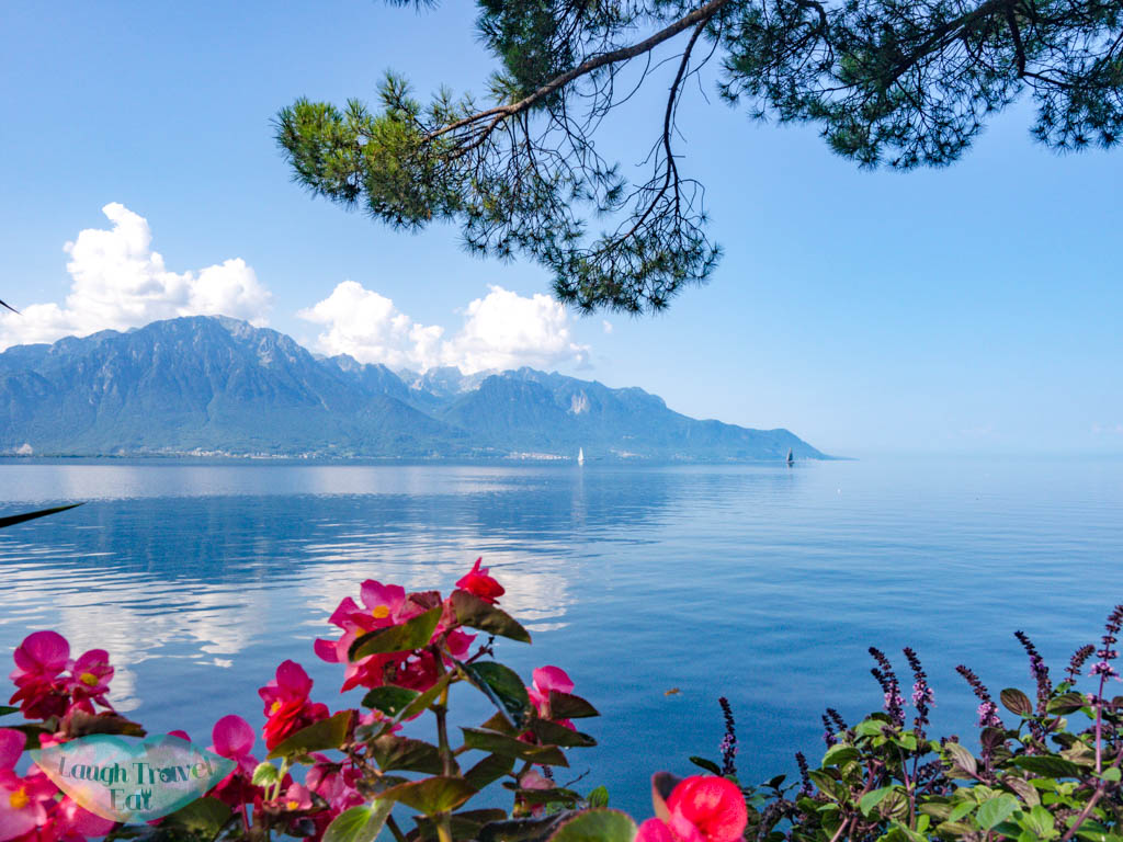 lake front flowers Montreux switzerland - laugh travel eat