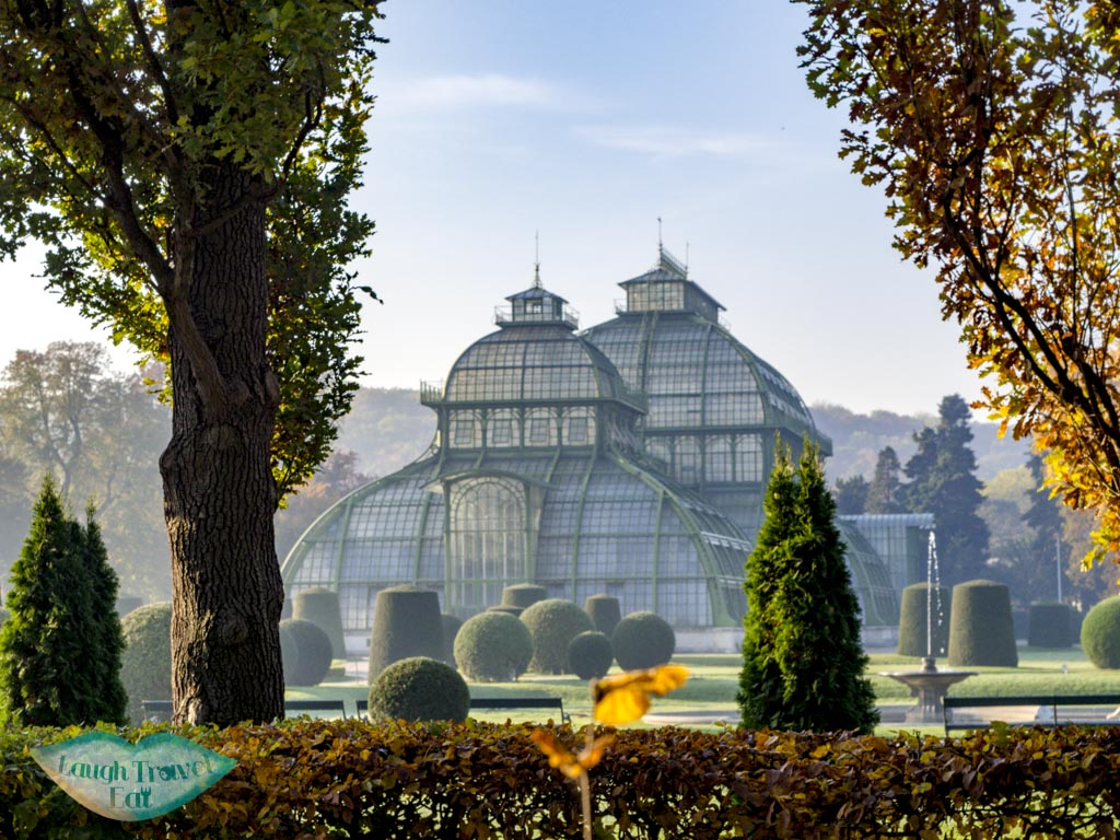 greenhouse in garden of schobrunn palace vienna austria - laugh travel eat
