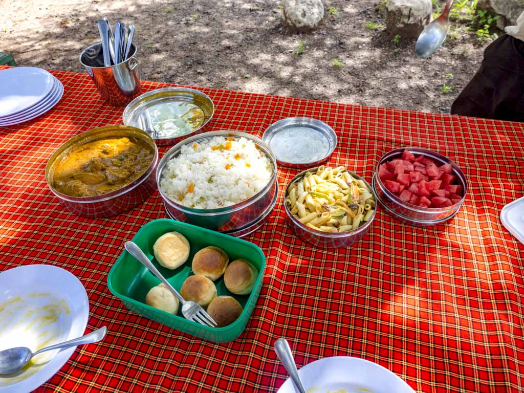 hot lunch by shadows of africa at matete picnic site tarangeri national park tanzania africa - laugh travel eat