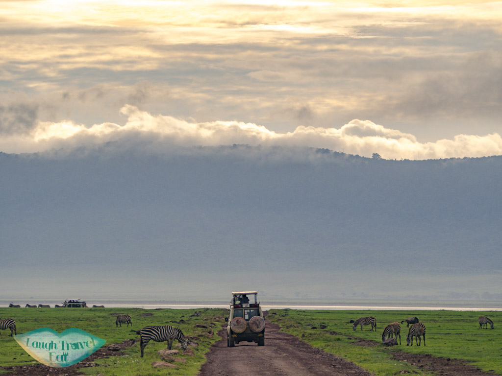 jeep in ngorogoron national park tanzania africa - laugh travel eat