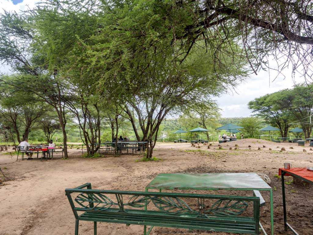 matete picnic site tarangeri national park tanzania africa - laugh travel eat