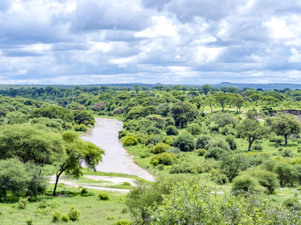 river tarangeri national park tanzania africa - laugh travel eat