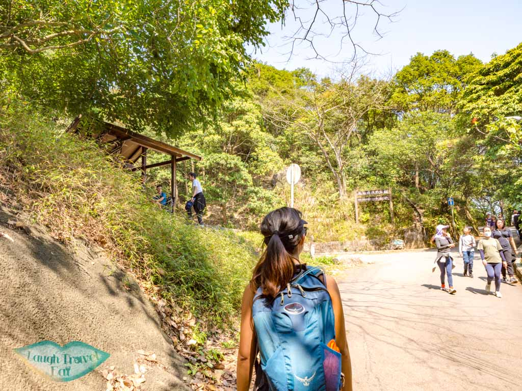 fei ngo shan road to middle hill hiking trail kowloon hong - laugh travel eat-2