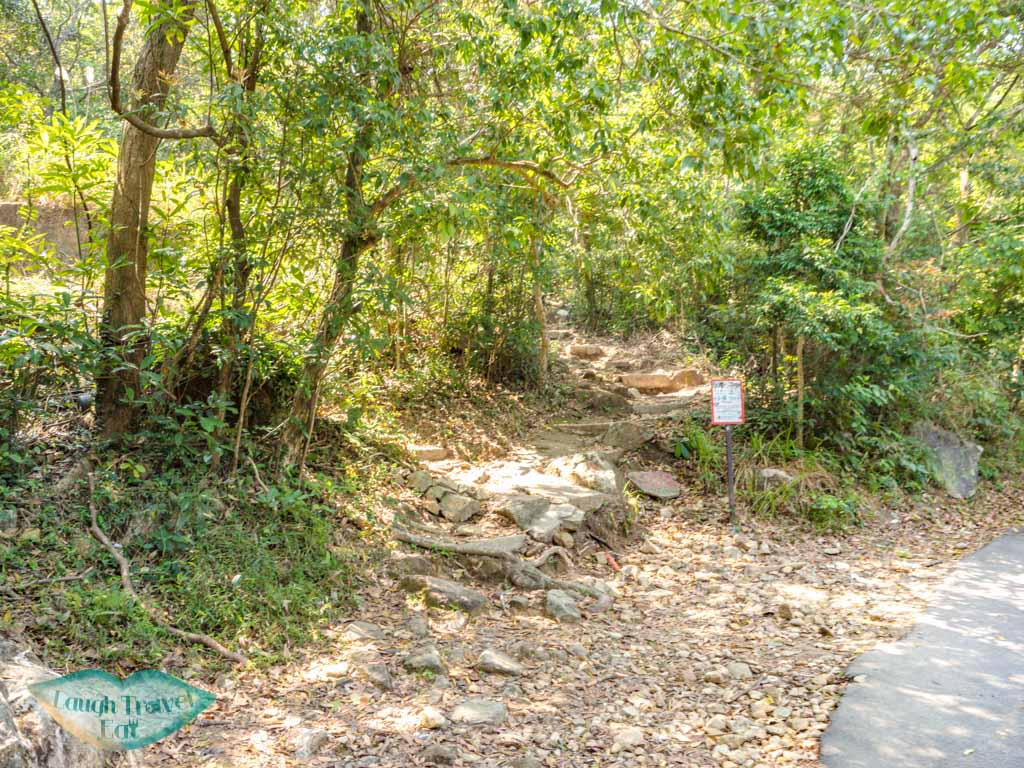 fei ngo shan road to middle hill hiking trail kowloon hong - laugh travel eat-3