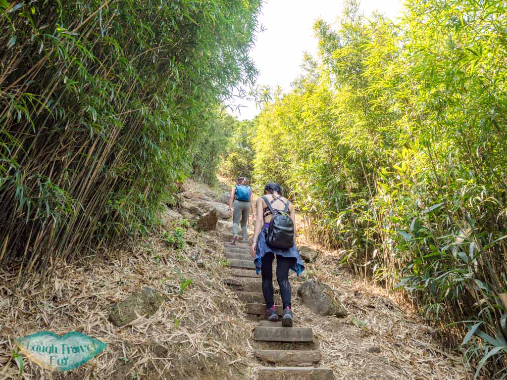 stairs up middle hill hiking trail kowloon hong - laugh travel eat