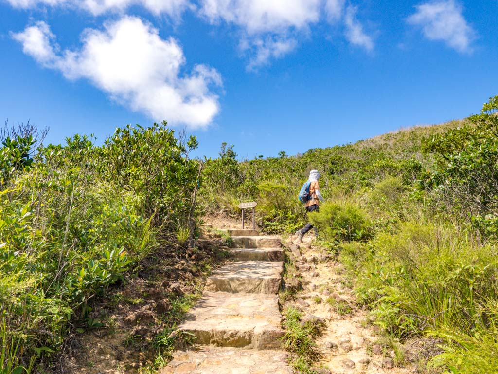 branch off maclehose stage 2 trail kam kui shek teng trail sai kung hong kong - laugh travel eat