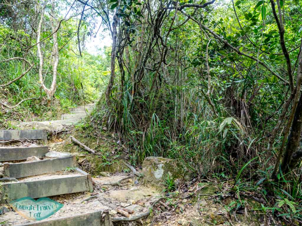 lv 2 to lv 4 nam chung country trail ping nam stream fanling new territories hong kong - laugh travel eat-3