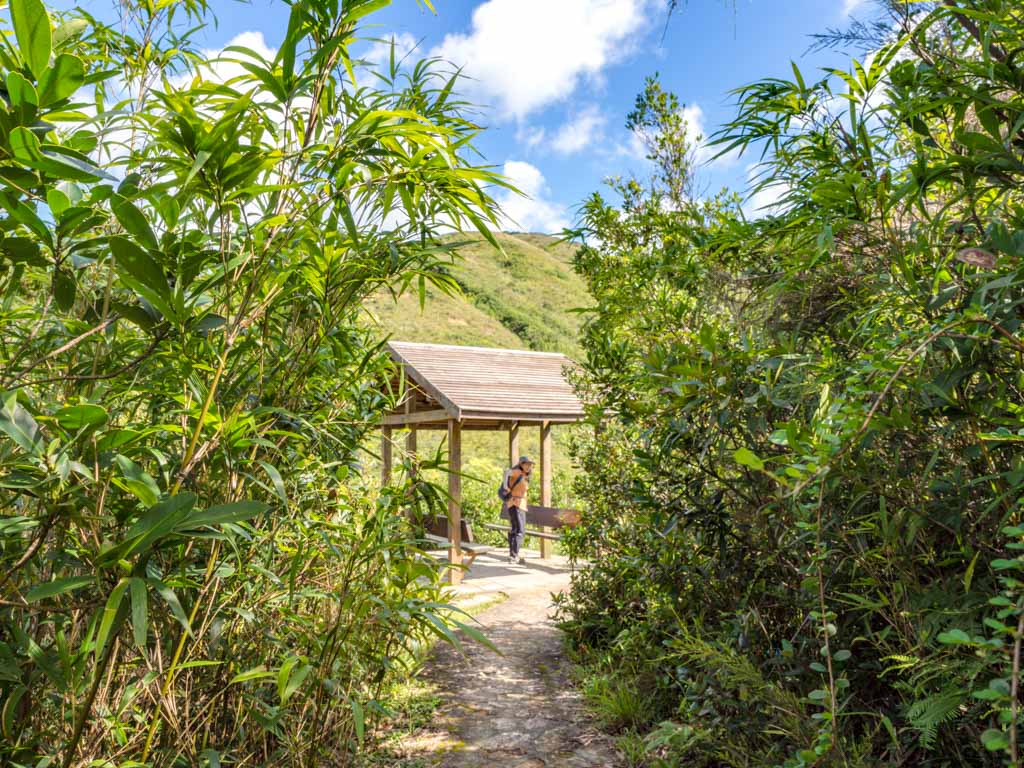 pavillion maclehose stage 2 trail kam kui shek teng trail sai kung hong kong - laugh travel eat