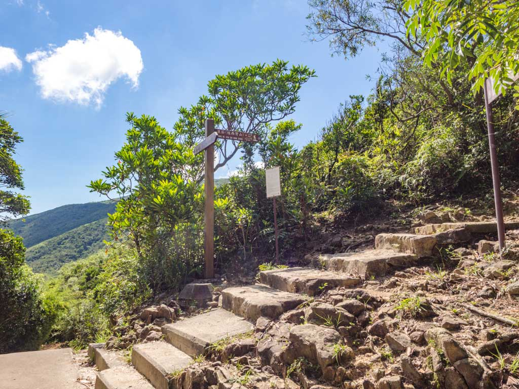 stairs to maclehose stage 2 trail kam kui shek teng trail sai kung hong kong - laugh travel eat