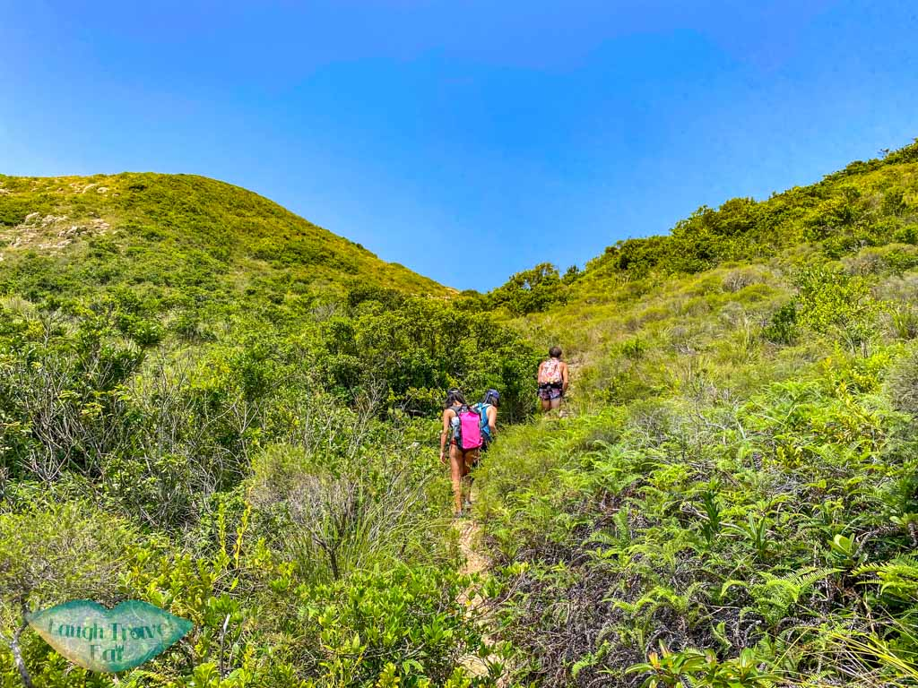 trail from goldfish arch top to view point jin island sai kung hong kong - laugh travel eat