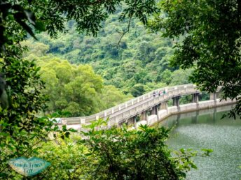 Hok Tau Reservoir viewed from above new territories hong kong - laugh travel eat