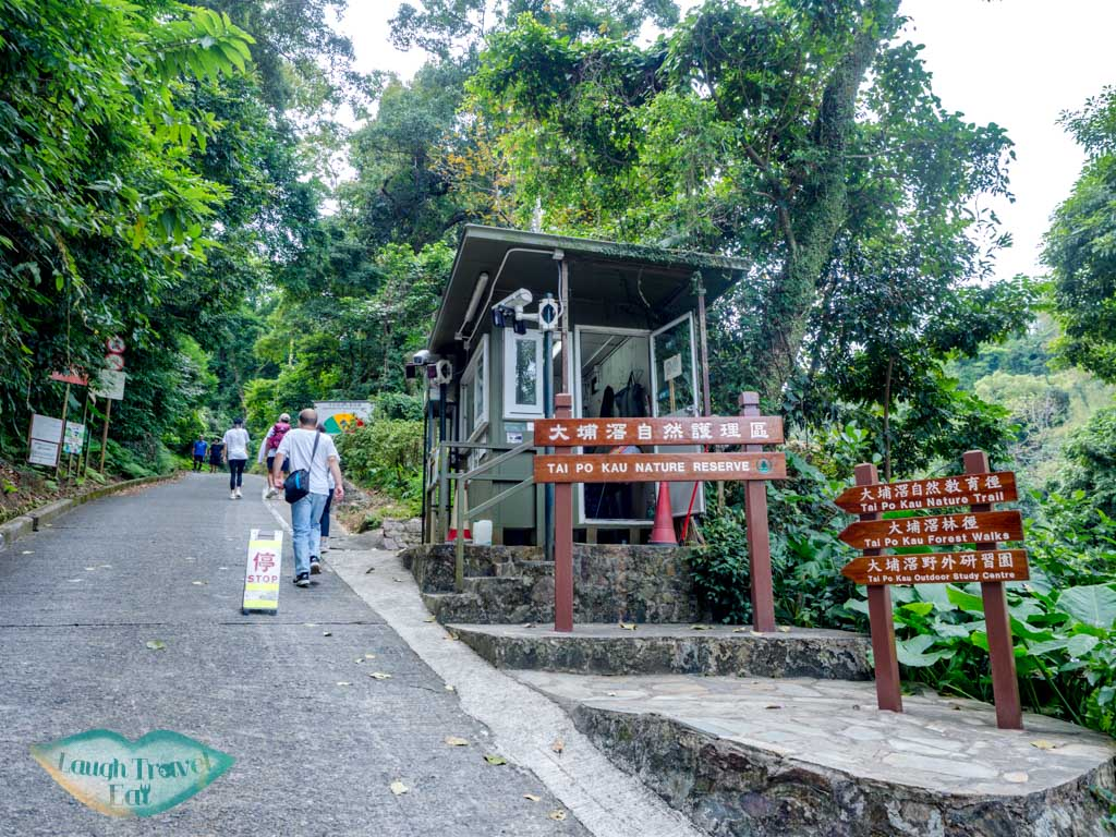 getting out of tai po kau nature reserve new territories hong kong - laugh travel eat