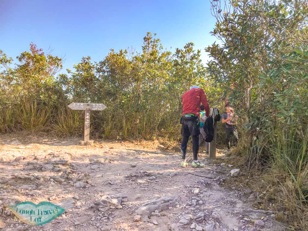 Chek Ma Tau to Mount Newland plover cove country park trail hong kong - laugh travel eat