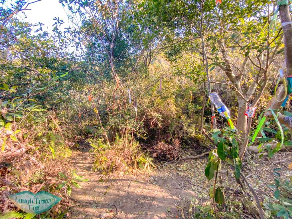 getting out of wong chuk kok tsui bluff head plover cove country park trail hong kong - laugh travel eat-3