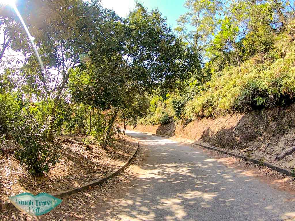 sweet gum woods junction to reservoir island viewpoint tai lam country park