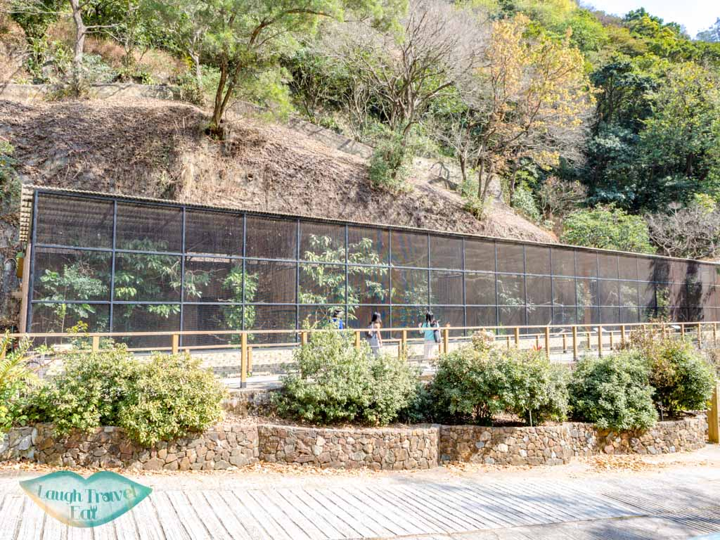 Jim Ades Raptor Sanctuary lower nature reserve kadoorie farm tai po hong kong - laugh travel eat