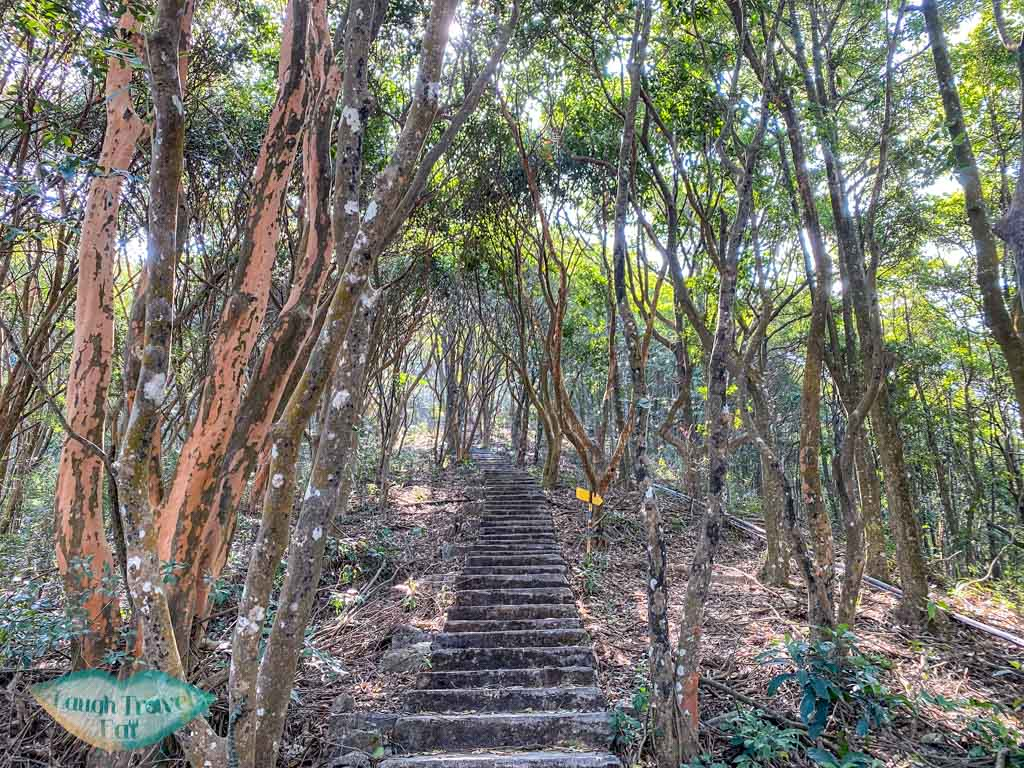 end of sky trail kadoorie farm tai po hong kong - laugh travel eat