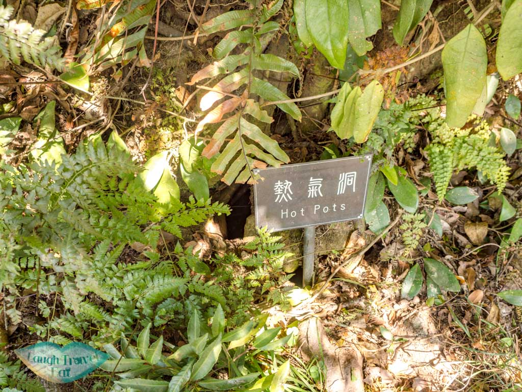 hot spots kwan yum shan upper nature reserve kadoorie farm tai po hong kong - laugh travel eat