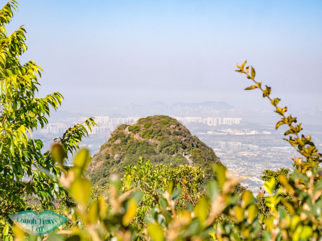kwun yum shan from afar kadoorie farm tai po hong kong - laugh travel eat