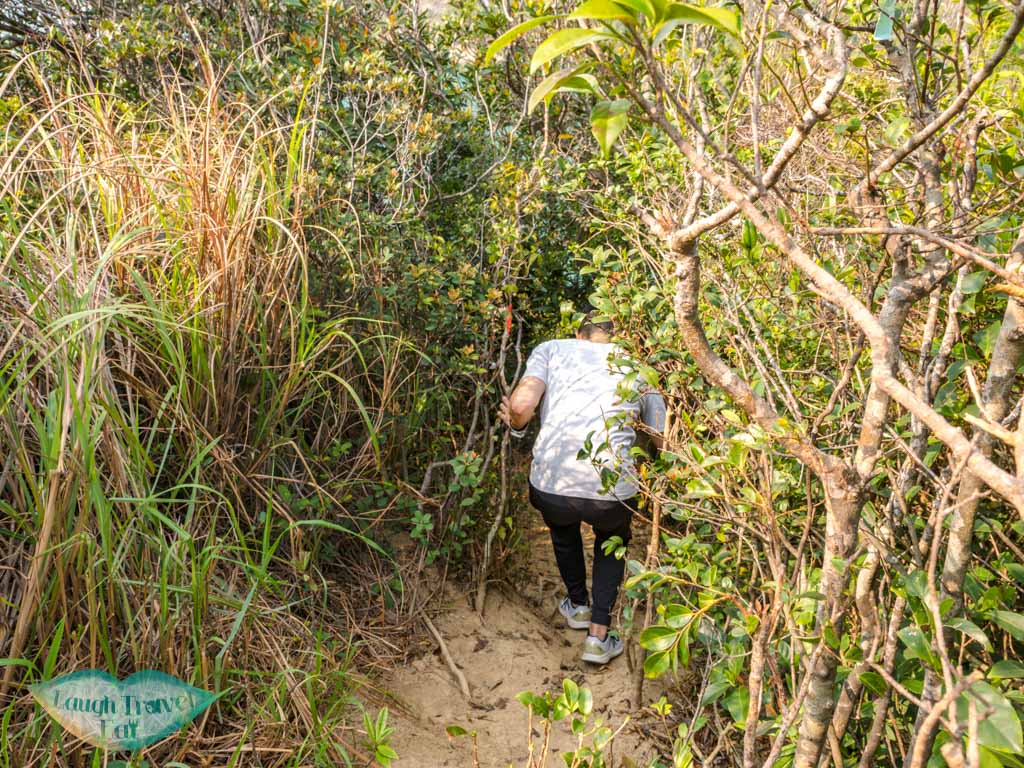 second peak to devil's claw chung hom kok hong kong - laugh travel eat-2